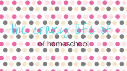 The Crazy Life of Homeschool