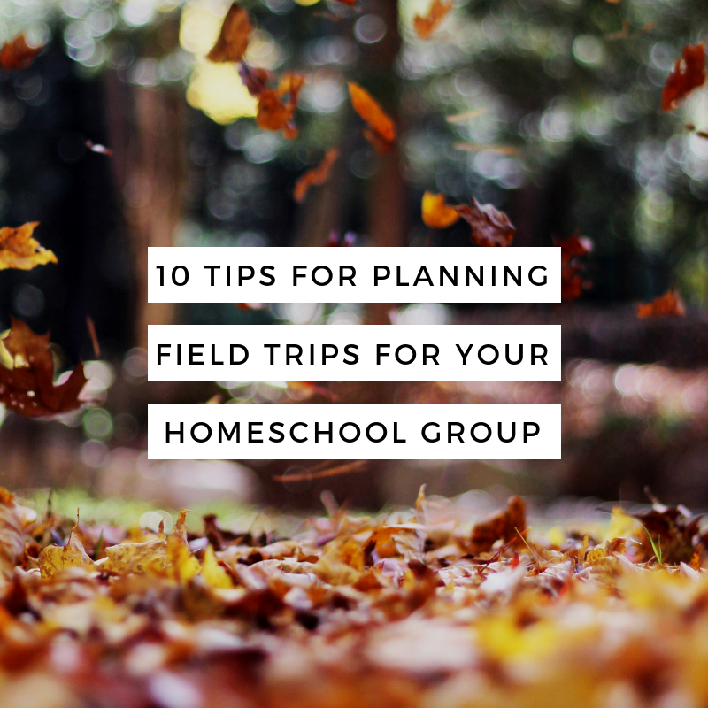 10 Tips for planning perfect field trips for your homeschool group