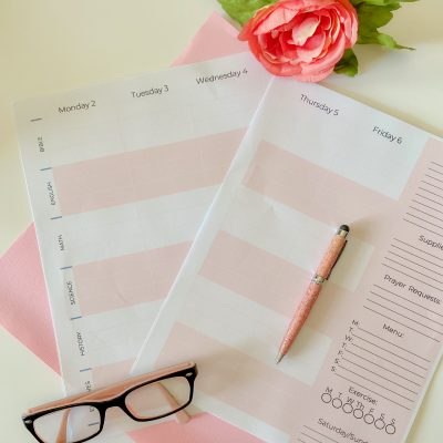 The Awesome New 2021 – 2022 Homeschool Weekly Planner is here!